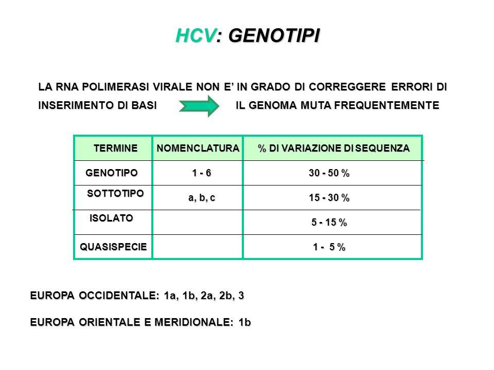 HCV: GENOTIPI LA RNA POLIMERASI VIRALE NON E IN GRADO DI CORREGGERE ERRORI DI INSERIMENTO DI BASI IL GENOMA MUTA FREQUENTEMENTE EUROPA OCCIDENTALE: 1a, 1b, 2a, 2b, 3 EUROPA ORIENTALE E MERIDIONALE: 1b TERMINENOMENCLATURA % DI VARIAZIONE DI SEQUENZA GENOTIPO SOTTOTIPO ISOLATO QUASISPECIE 1 - 6 a, b, c 30 - 50 % 15 - 30 % 5 - 15 % 1 - 5 %