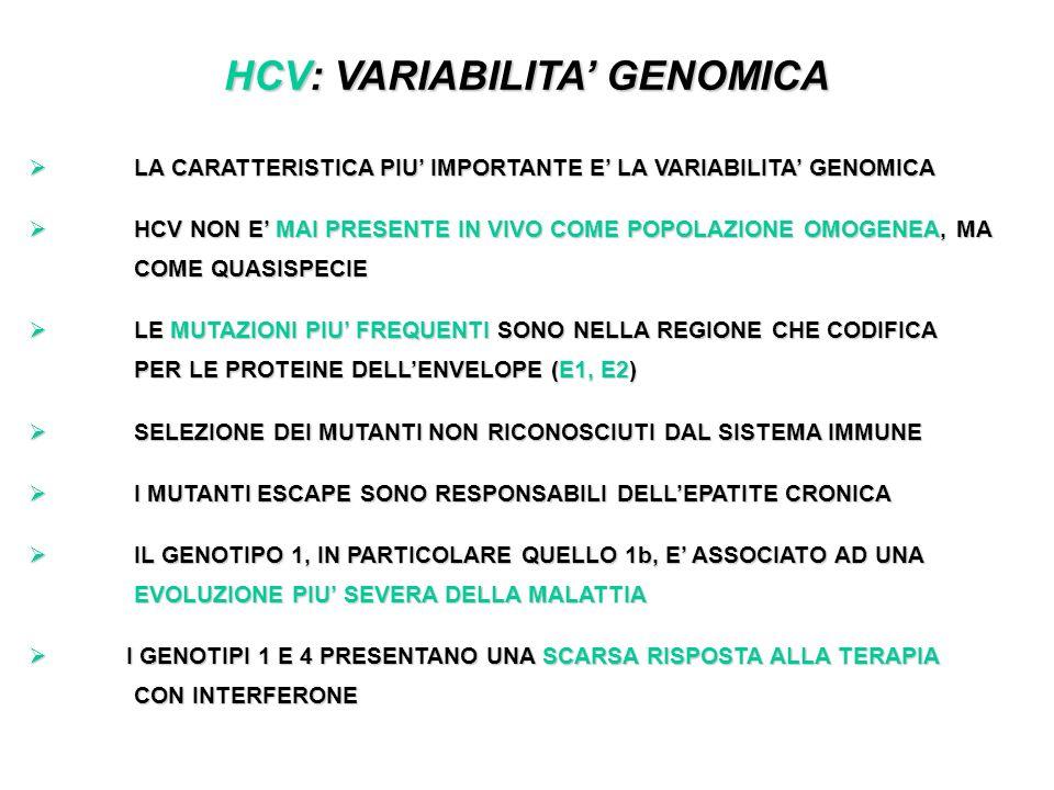 HCV: VARIABILITA GENOMICA LA CARATTERISTICA PIU IMPORTANTE E LA VARIABILITA GENOMICA LA CARATTERISTICA PIU IMPORTANTE E LA VARIABILITA GENOMICA HCV NON E MAI PRESENTE IN VIVO COME POPOLAZIONE OMOGENEA, MA COME QUASISPECIE HCV NON E MAI PRESENTE IN VIVO COME POPOLAZIONE OMOGENEA, MA COME QUASISPECIE LE MUTAZIONI PIU FREQUENTI SONO NELLA REGIONE CHE CODIFICA PER LE PROTEINE DELLENVELOPE (E1, E2) LE MUTAZIONI PIU FREQUENTI SONO NELLA REGIONE CHE CODIFICA PER LE PROTEINE DELLENVELOPE (E1, E2) SELEZIONE DEI MUTANTI NON RICONOSCIUTI DAL SISTEMA IMMUNE SELEZIONE DEI MUTANTI NON RICONOSCIUTI DAL SISTEMA IMMUNE I MUTANTI ESCAPE SONO RESPONSABILI DELLEPATITE CRONICA I MUTANTI ESCAPE SONO RESPONSABILI DELLEPATITE CRONICA IL GENOTIPO 1, IN PARTICOLARE QUELLO 1b, E ASSOCIATO AD UNA EVOLUZIONE PIU SEVERA DELLA MALATTIA IL GENOTIPO 1, IN PARTICOLARE QUELLO 1b, E ASSOCIATO AD UNA EVOLUZIONE PIU SEVERA DELLA MALATTIA I GENOTIPI 1 E 4 PRESENTANO UNA SCARSA RISPOSTA ALLA TERAPIA CON INTERFERONE I GENOTIPI 1 E 4 PRESENTANO UNA SCARSA RISPOSTA ALLA TERAPIA CON INTERFERONE