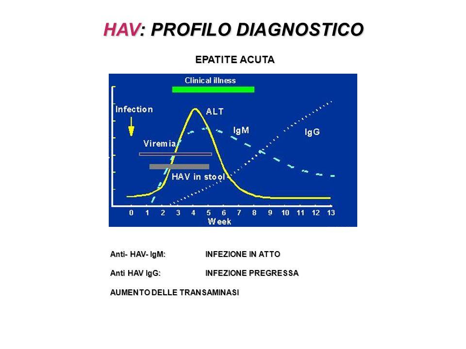 HAV: PROFILO DIAGNOSTICO EPATITE ACUTA Anti- HAV- IgM: INFEZIONE IN ATTO Anti HAV IgG: INFEZIONE PREGRESSA AUMENTO DELLE TRANSAMINASI