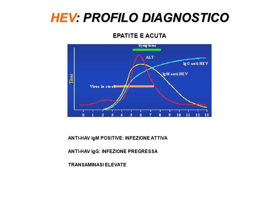 HEV: PROFILO DIAGNOSTICO EPATITE E ACUTA ANTI-HAV IgM POSITIVE: INFEZIONE ATTIVA ANTI-HAV IgG: INFEZIONE PREGRESSA TRANSAMINASI ELEVATE
