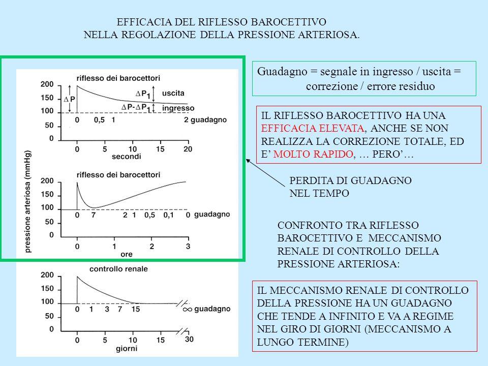 Meccanismi di controllo della Pressione Arteriosa A feed-back negativo A breve latenza A media latenza A lunga latenza Riflesso BAROCETTIVORiflesso chemocettivo Risposta ischemica centrale Catecolamine (midollare surrenale) ADH Sistema Renina/Angiotensina Peptide Atriale Natriuretico (PAN) Diuresi da pressione Angiotensina Aldosterone Controlli adattativi prepotenti Reazione di allarme Adattamento allesercizio fisico