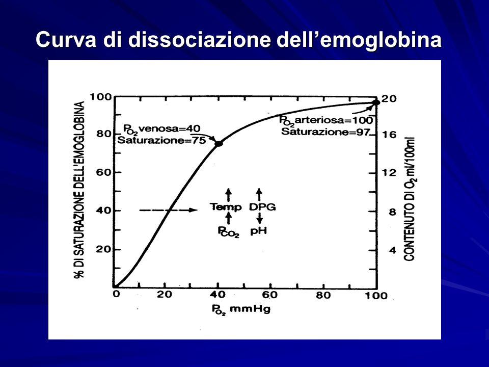 Curva di dissociazione dellemoglobina