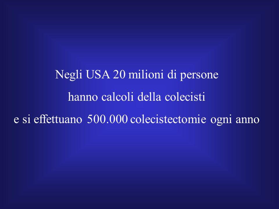 Negli USA 20 milioni di persone hanno calcoli della colecisti e si effettuano 500.000 colecistectomie ogni anno