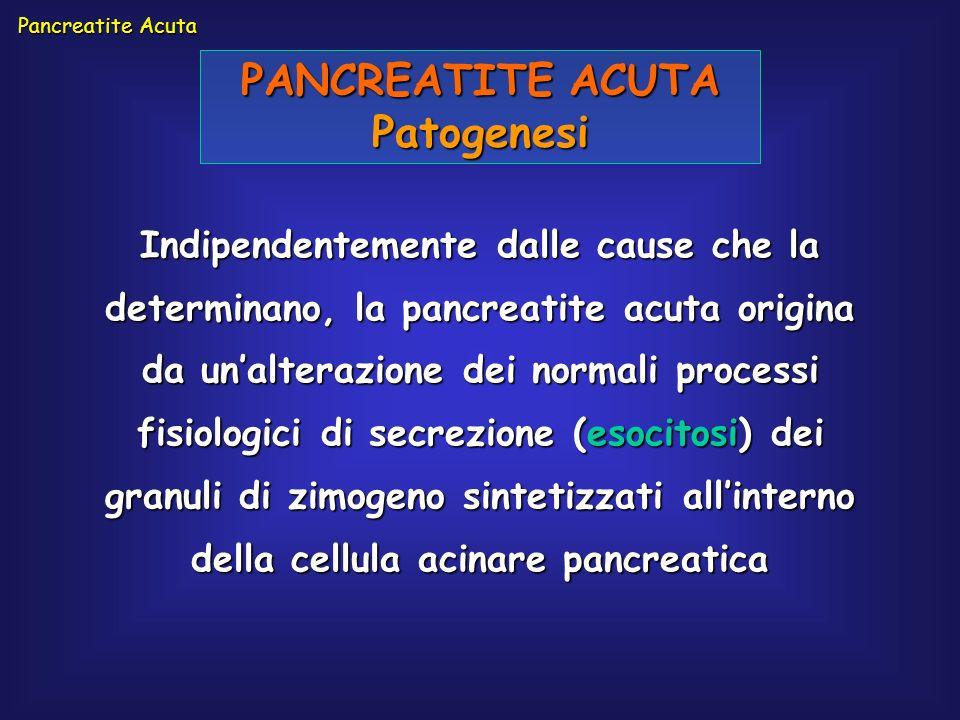 PANCREATITE ACUTA Patogenesi Indipendentemente dalle cause che la determinano, la pancreatite acuta origina da unalterazione dei normali processi fisi