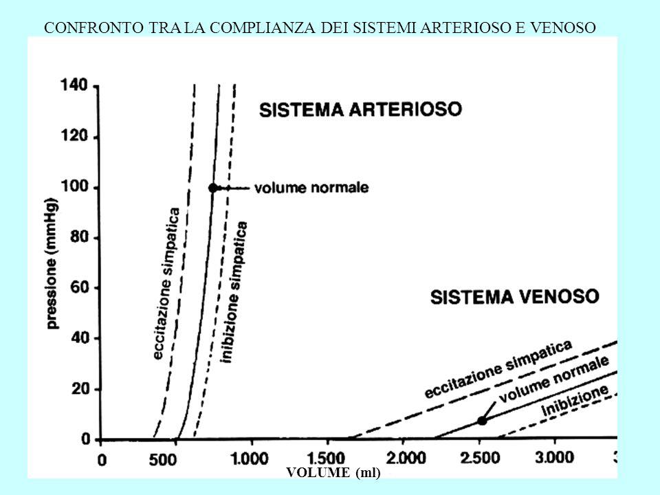 RELAZIONE VOLUME-PRESSIONE IN UN VASO VENOSO Le figurine in alto rappresentano sezioni trasverse del vaso ai diversi valori di pressione transmurale