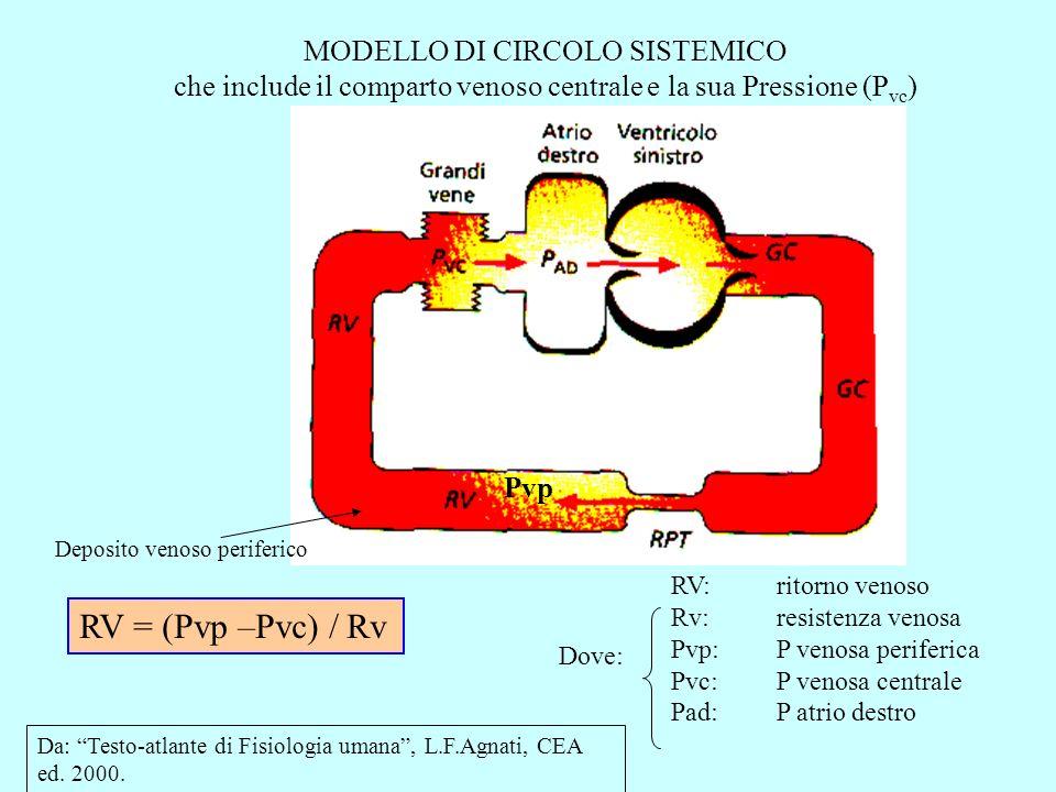 CURVA DEL RITORNO VENOSO RV = (Pvp –Pvc) / Rv Oppure, che è lo stesso: RV = (Pmr – Pad) / Rv RV:ritorno venoso Rv:resistenza venosa Pvp:P venosa periferica Pvc:P venosa centrale Pmr:P media di riempimento Pad:P atrio destro