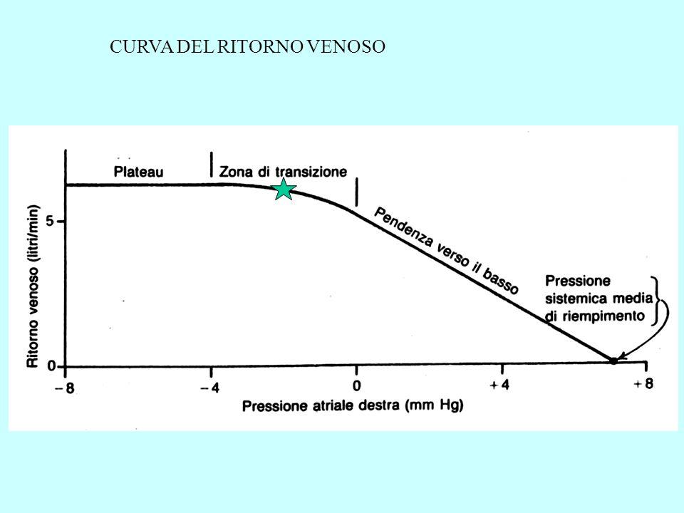 OSCILLAZIONI DELLA PRESSIONE VENOSA CENTRALE (registrate nella Vena Giugulare) E.C.G.