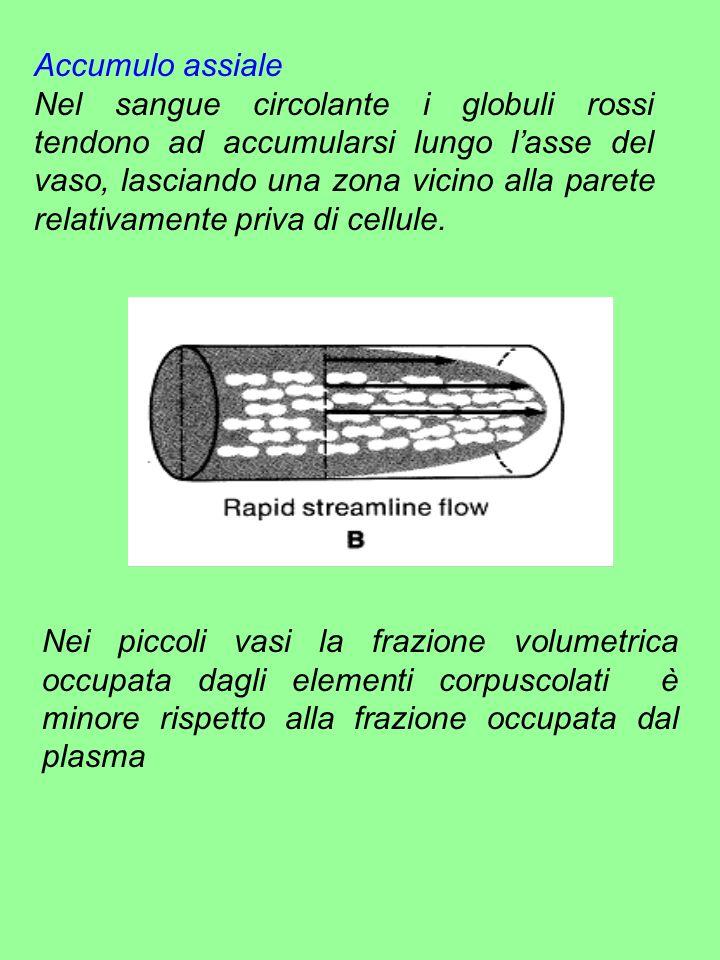 Accumulo assiale Nel sangue circolante i globuli rossi tendono ad accumularsi lungo lasse del vaso, lasciando una zona vicino alla parete relativament