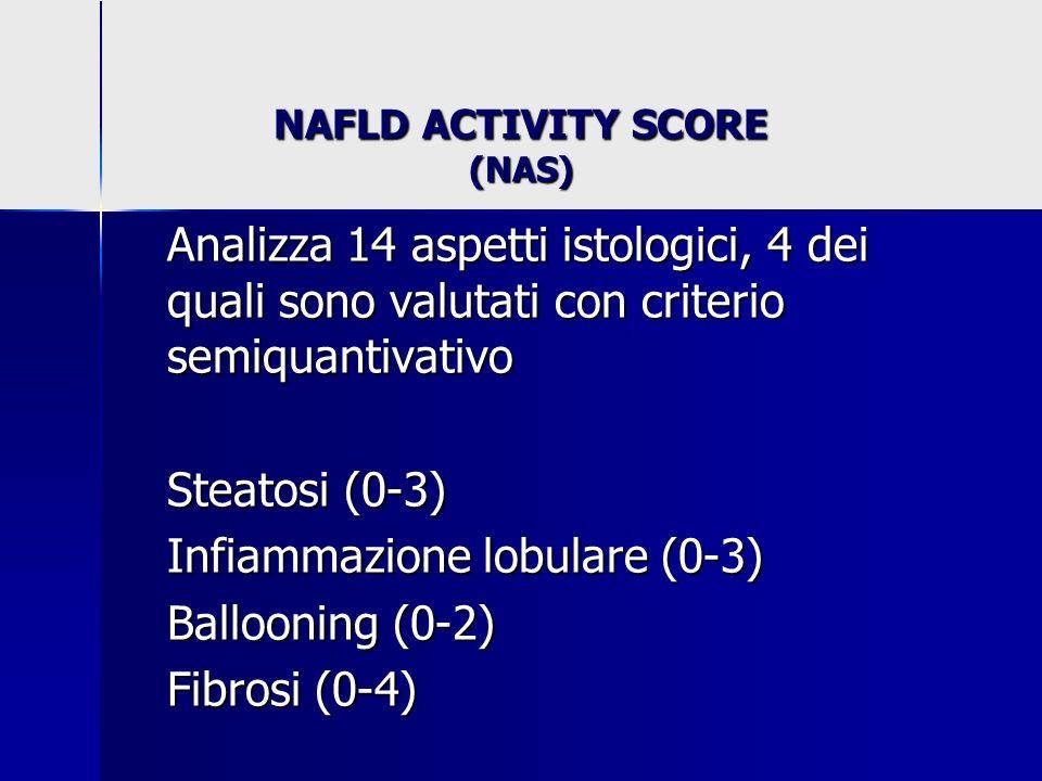 NAFLD ACTIVITY SCORE (NAS) Analizza 14 aspetti istologici, 4 dei quali sono valutati con criterio semiquantivativo Steatosi (0-3) Infiammazione lobula