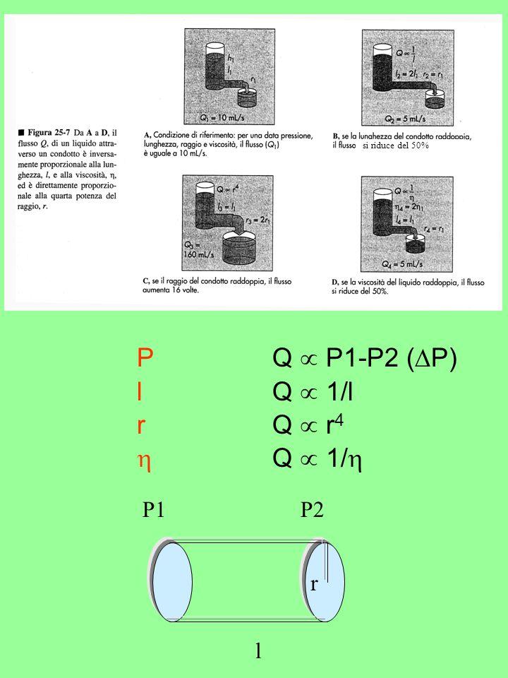si riduce del 50% P Q P1-P2 ( P) lQ 1/l rQ r 4 Q 1/ P1P2 r l