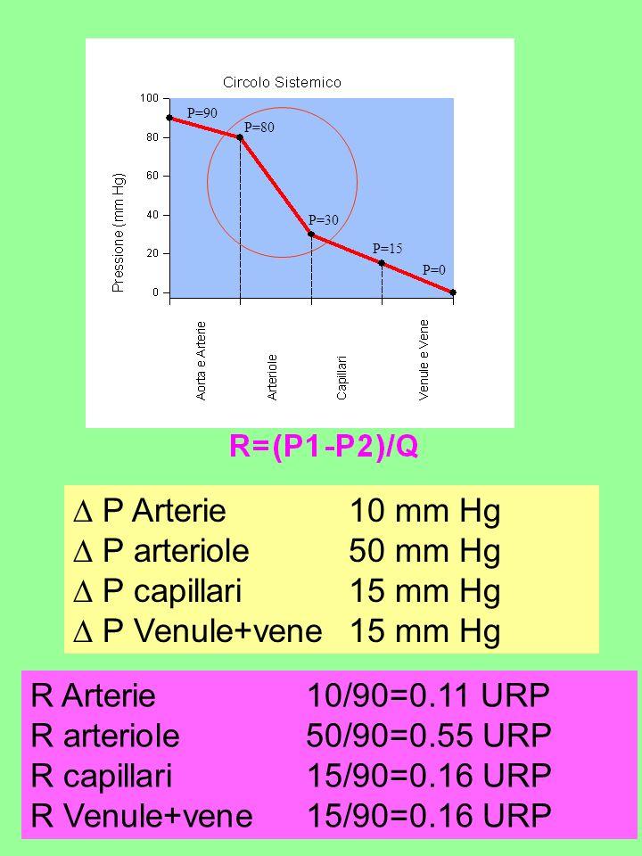 P Arterie 10 mm Hg P arteriole 50 mm Hg P capillari 15 mm Hg P Venule+vene 15 mm Hg R Arterie 10/90=0.11 URP R arteriole 50/90=0.55 URP R capillari 15/90=0.16 URP R Venule+vene 15/90=0.16 URP P=80 P=30 P=15 P=90 P=0