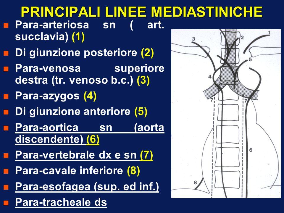 PRINCIPALI LINEE MEDIASTINICHE n Para-arteriosa sn ( art. succlavia) (1) n Di giunzione posteriore (2) n Para-venosa superiore destra (tr. venoso b.c.