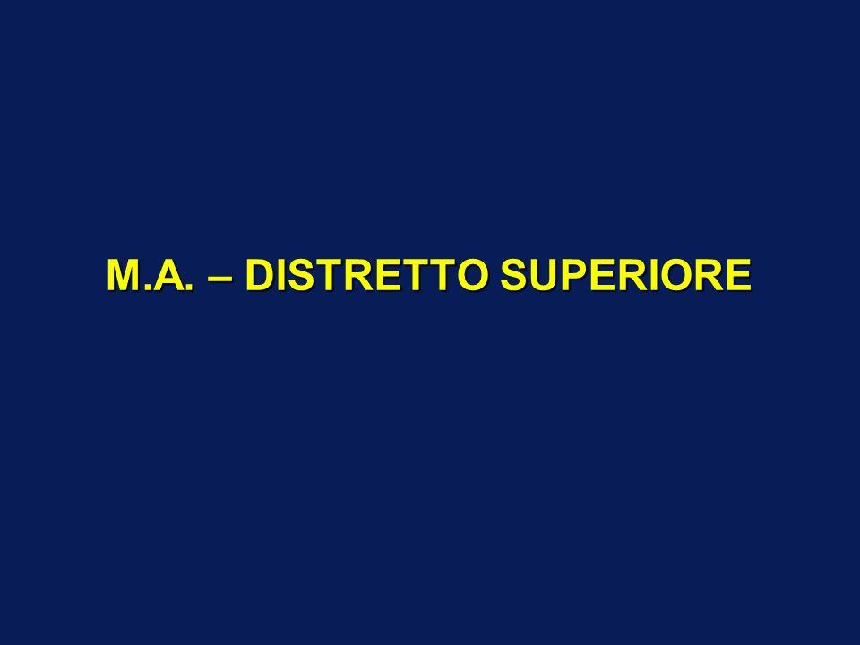 M.A. – DISTRETTO SUPERIORE