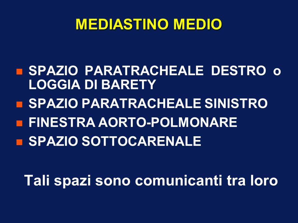 MEDIASTINO MEDIO n SPAZIO PARATRACHEALE DESTRO o LOGGIA DI BARETY n SPAZIO PARATRACHEALE SINISTRO n FINESTRA AORTO-POLMONARE n SPAZIO SOTTOCARENALE Ta