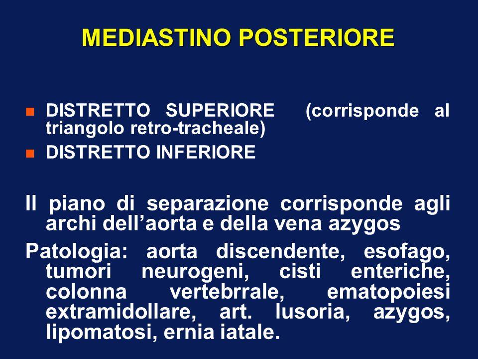 MEDIASTINO POSTERIORE n DISTRETTO SUPERIORE (corrisponde al triangolo retro-tracheale) n DISTRETTO INFERIORE Il piano di separazione corrisponde agli