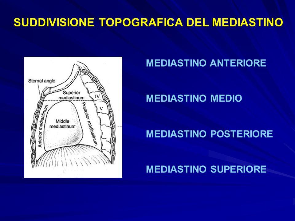 SUDDIVISIONE TOPOGRAFICA DEL MEDIASTINO MEDIASTINO ANTERIORE MEDIASTINO MEDIO MEDIASTINO POSTERIORE MEDIASTINO SUPERIORE