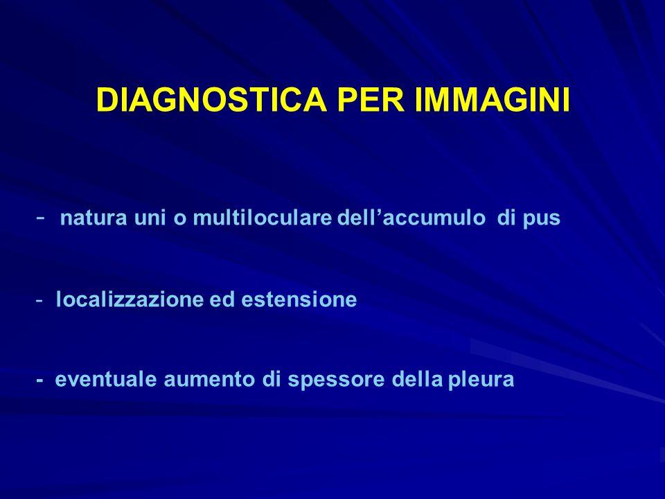 DIAGNOSTICA PER IMMAGINI - natura uni o multiloculare dellaccumulo di pus - localizzazione ed estensione - eventuale aumento di spessore della pleura
