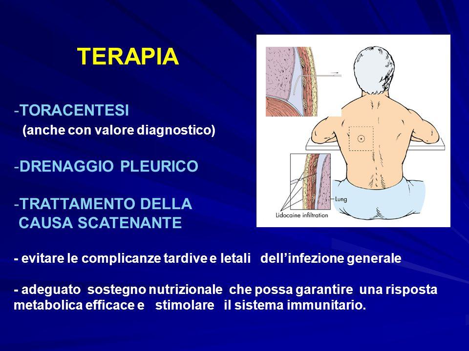 TERAPIA -TORACENTESI (anche con valore diagnostico) -DRENAGGIO PLEURICO -TRATTAMENTO DELLA CAUSA SCATENANTE - evitare le complicanze tardive e letali