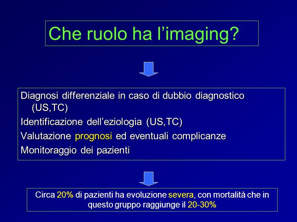Diagnosi differenziale in caso di dubbio diagnostico (US,TC) Identificazione delleziologia (US,TC) Valutazione prognosi ed eventuali complicanze Monit