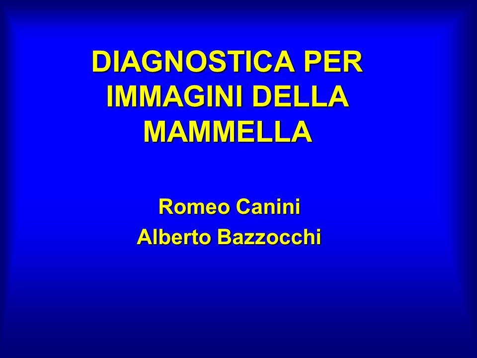 DIAGNOSTICA PER IMMAGINI DELLA MAMMELLA Romeo Canini Alberto Bazzocchi