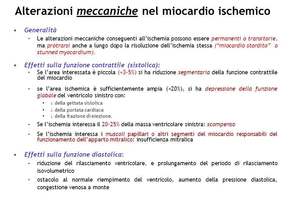 Alterazioni meccaniche nel miocardio ischemico Generalità –Le alterazioni meccaniche conseguenti allischemia possono essere permanenti o transitorie,