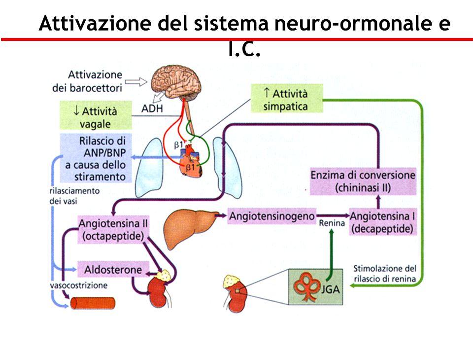 Attivazione del sistema neuro-ormonale e I.C.