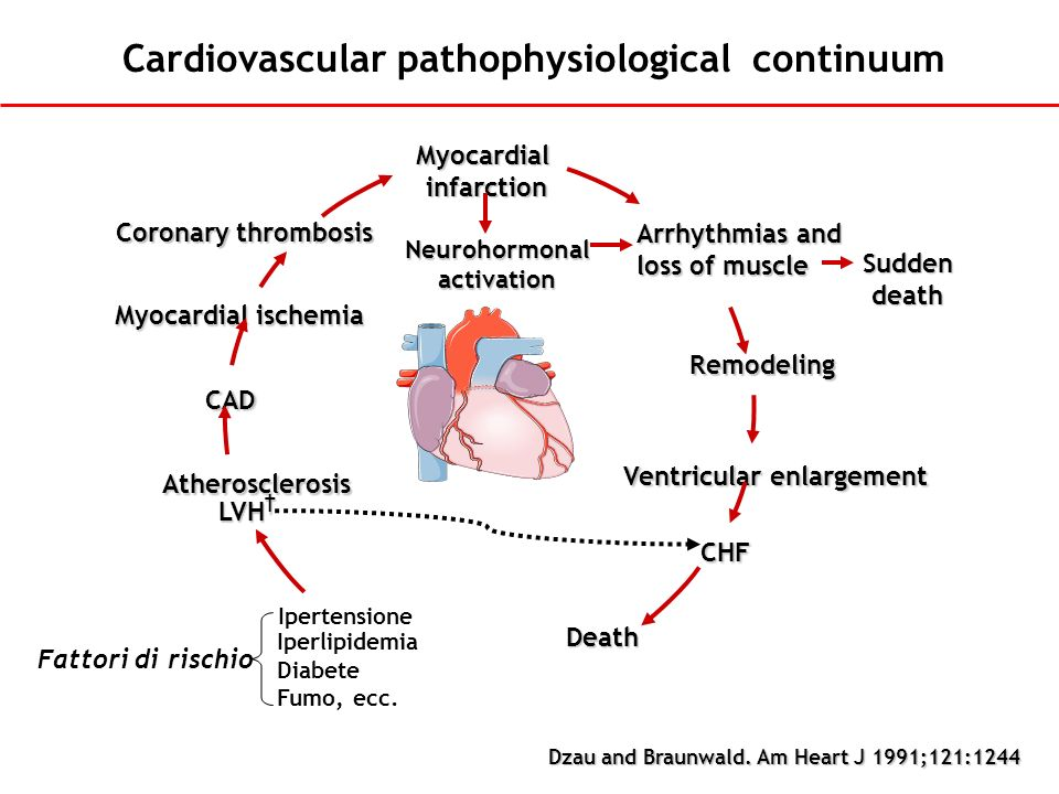 Cardiovascular pathophysiological continuum Dzau and Braunwald. Am Heart J 1991;121:1244 Arrhythmias and loss of muscle Sudden death Remodeling Ventri