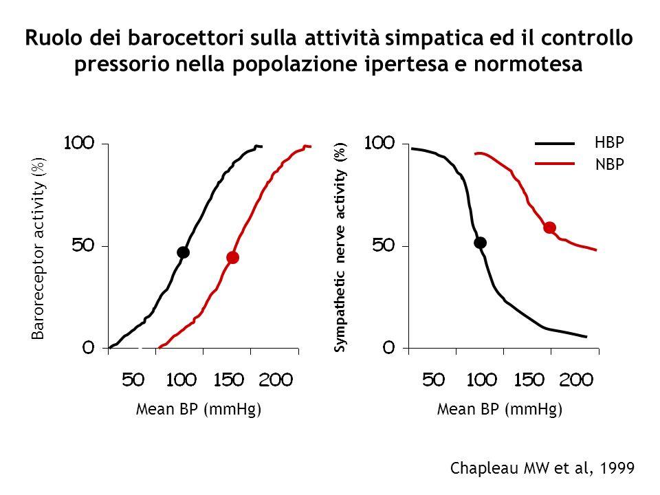 Ruolo dei barocettori sulla attività simpatica ed il controllo pressorio nella popolazione ipertesa e normotesa Baroreceptor activity (%) Mean BP (mmH