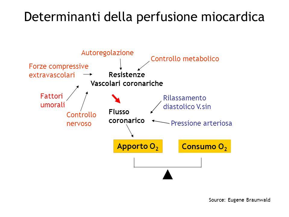 Determinanti della perfusione miocardica Flusso coronarico Resistenze Vascolari coronariche Apporto O 2 Consumo O 2 Autoregolazione Controllo metaboli