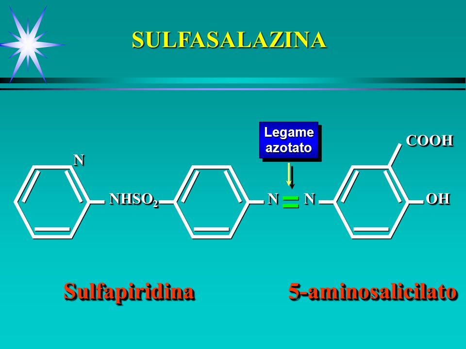 SULFASALAZINA LegameazotatoLegameazotato SulfapiridinaSulfapiridina NN NHSO 2 NN NNOHOHCOOHCOOH5-aminosalicilato5-aminosalicilato