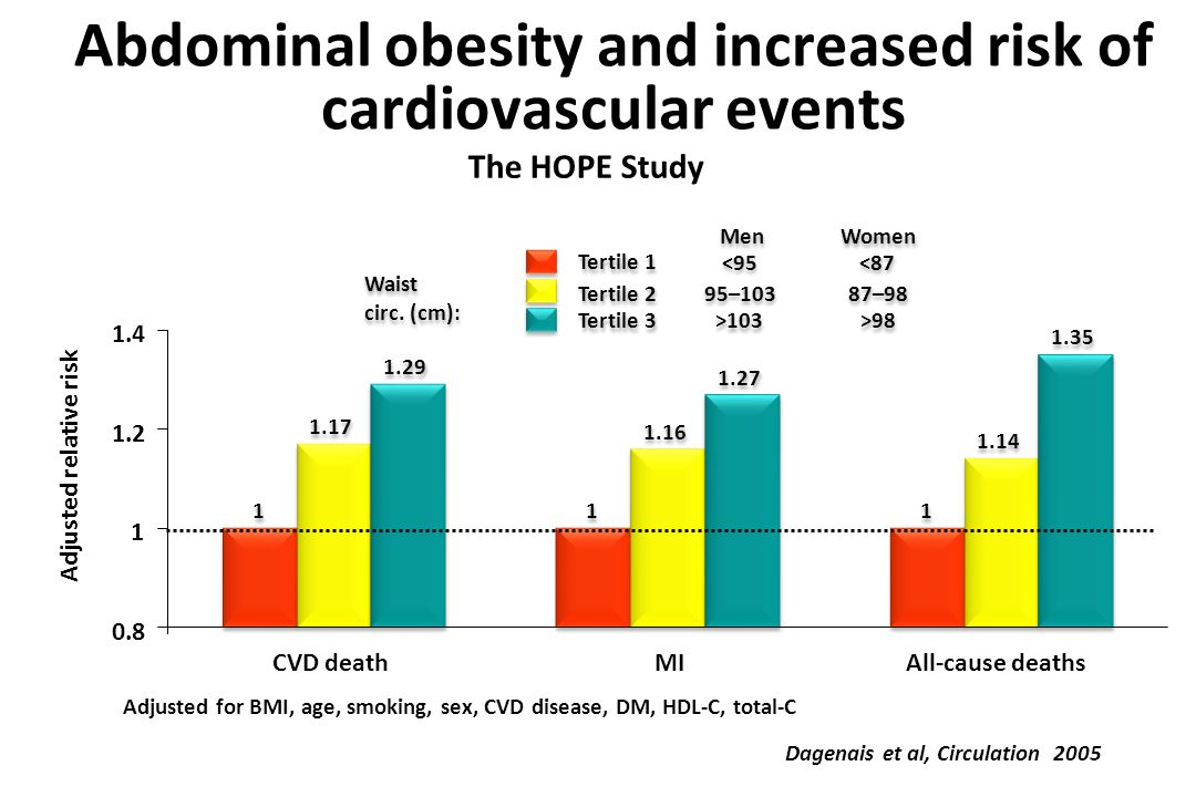 Abdominal obesity and increased risk of cardiovascular events Dagenais et al, Circulation 2005 Adjusted relative risk 1 1 1 1 1 1 1.17 1.16 1.14 1.29