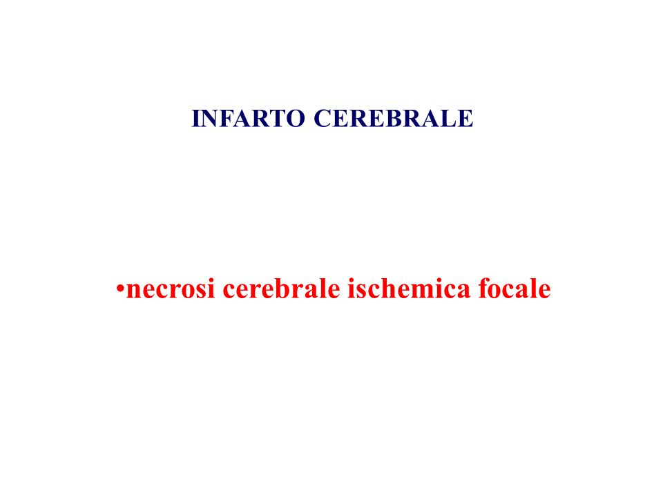 INFARTO CEREBRALE necrosi cerebrale ischemica focale