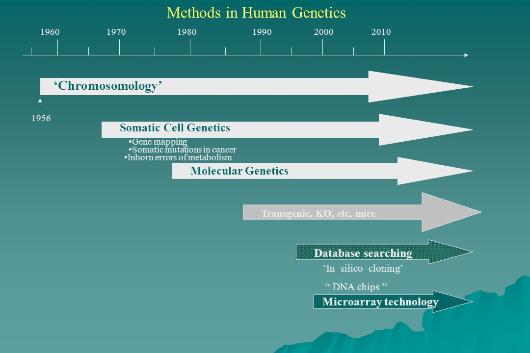 Methods in Human Genetics 19601970198019902000 Chromosomology 1956 Somatic Cell Genetics Gene mapping Inborn errors of metabolism Somatic mutations in