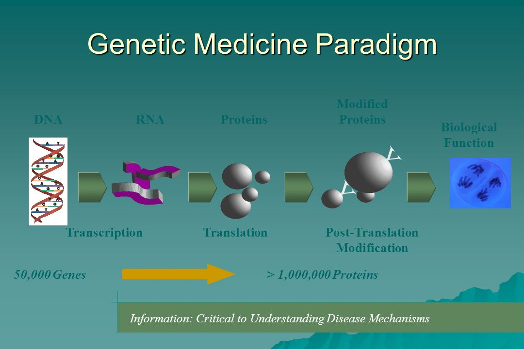 Genetic Medicine Paradigm Information: Critical to Understanding Disease Mechanisms Y Y RNAProteins Modified Proteins DNA Biological Function Transcri