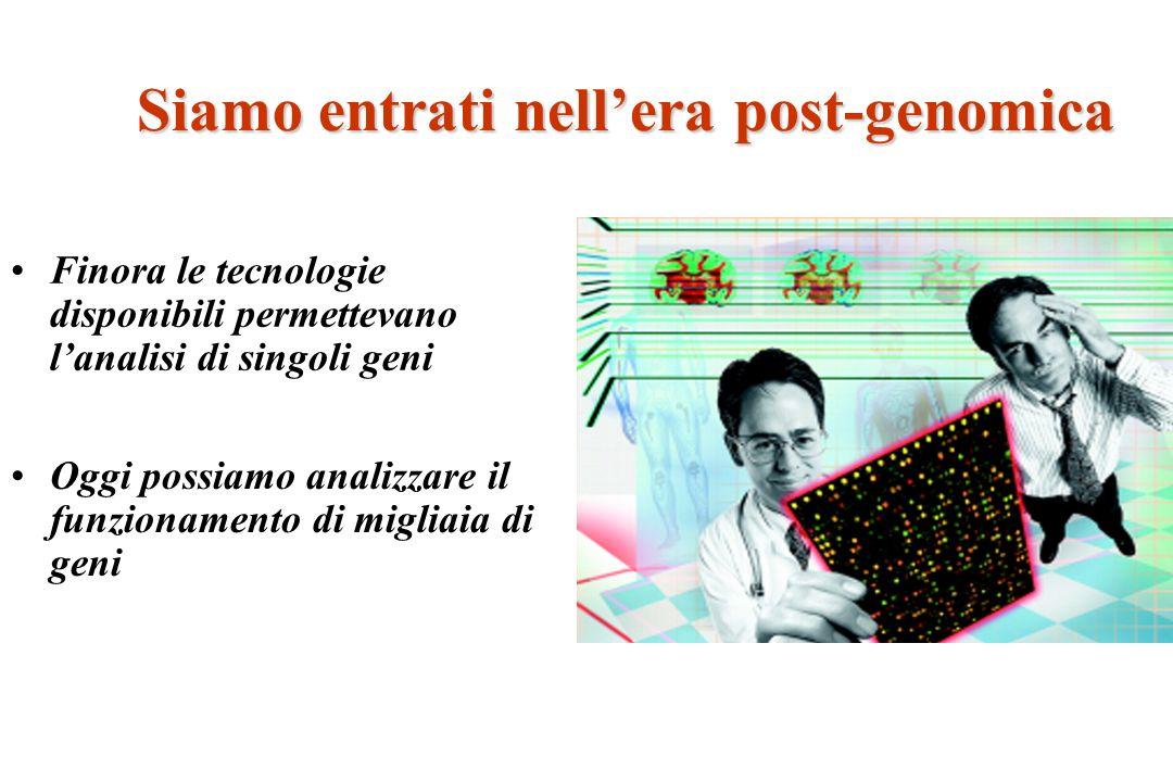 Siamo entrati nellera post-genomica Finora le tecnologie disponibili permettevano lanalisi di singoli geni Oggi possiamo analizzare il funzionamento d