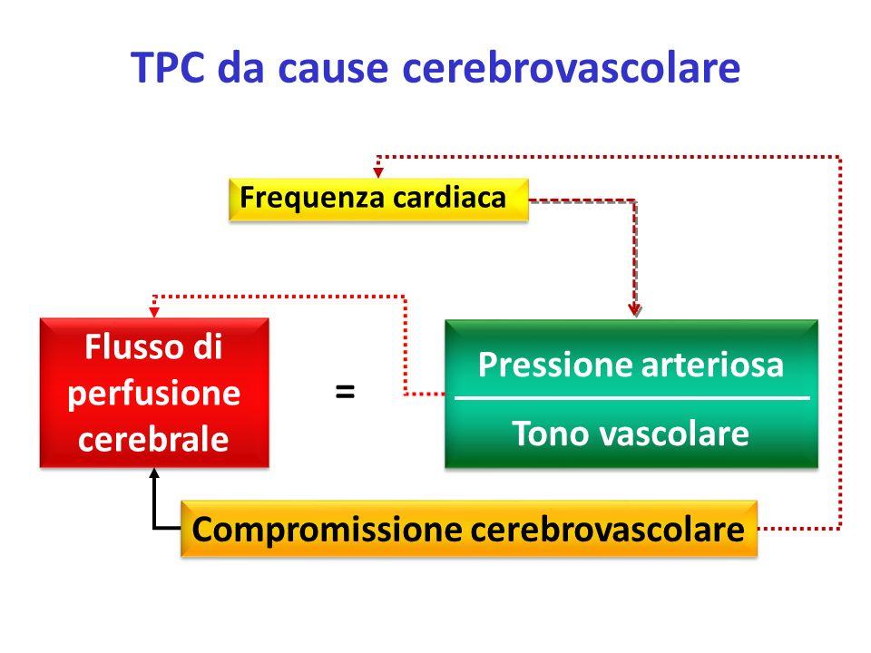 Frequenza cardiaca Flusso di perfusione cerebrale Pressione arteriosa Tono vascolare = TPC da cause cerebrovascolare Compromissione cerebrovascolare