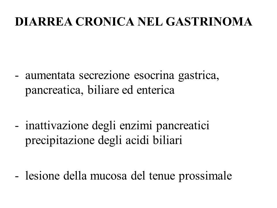 DIARREA CRONICA NEL GASTRINOMA -aumentata secrezione esocrina gastrica, pancreatica, biliare ed enterica -inattivazione degli enzimi pancreatici precipitazione degli acidi biliari -lesione della mucosa del tenue prossimale