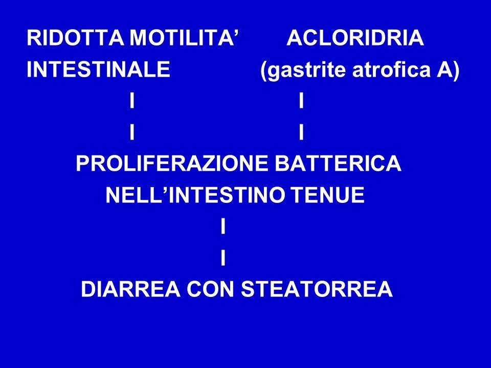 RIDOTTA MOTILITA ACLORIDRIA INTESTINALE (gastrite atrofica A) I I PROLIFERAZIONE BATTERICA NELLINTESTINO TENUE I DIARREA CON STEATORREA