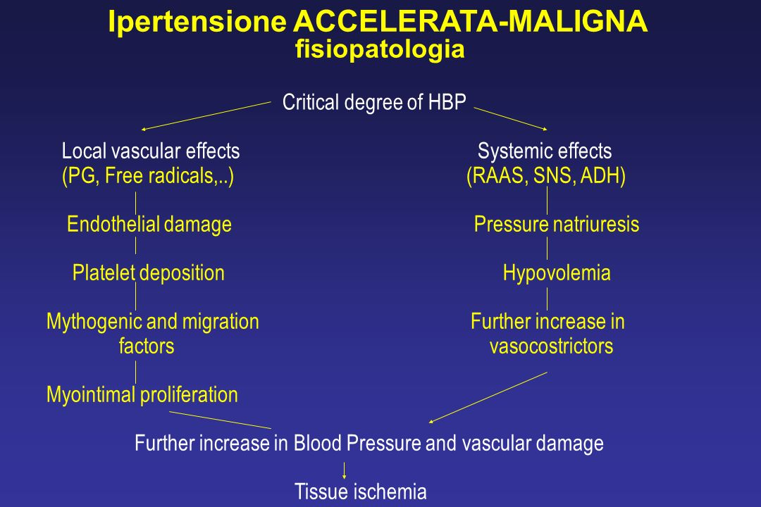 Ipertensione ACCELERATA-MALIGNA fisiopatologia Critical degree of HBP Local vascular effects Systemic effects (PG, Free radicals,..) (RAAS, SNS, ADH)