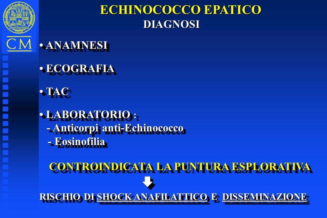 ECHINOCOCCO EPATICO DIAGNOSI DIAGNOSI ANAMNESI ANAMNESI ECOGRAFIA ECOGRAFIA TAC TAC LABORATORIO : LABORATORIO : - Anticorpi anti-Echinococco - Anticor