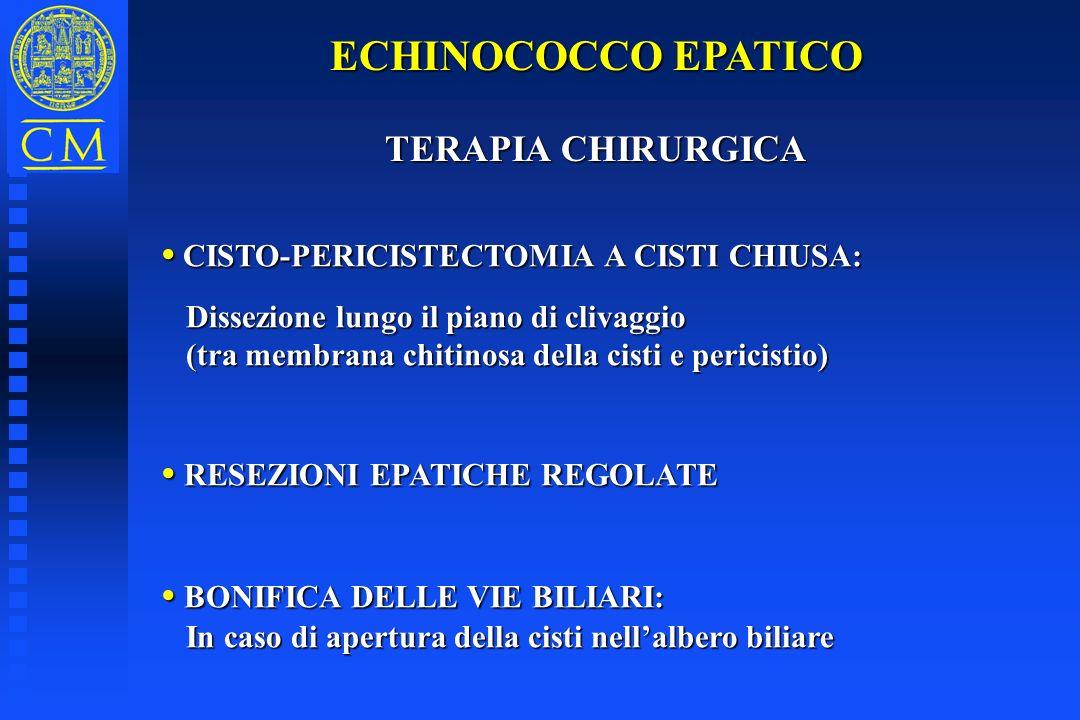 ECHINOCOCCO EPATICO TERAPIA CHIRURGICA TERAPIA CHIRURGICA CISTO-PERICISTECTOMIA A CISTI CHIUSA: CISTO-PERICISTECTOMIA A CISTI CHIUSA: Dissezione lungo