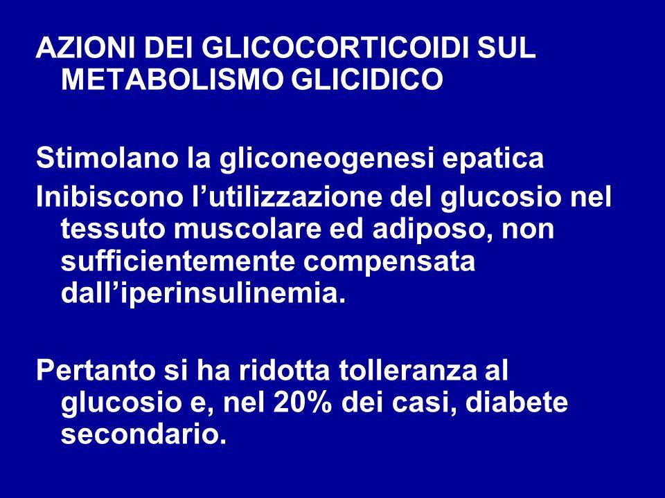 AZIONI DEI GLICOCORTICOIDI SUL METABOLISMO GLICIDICO Stimolano la gliconeogenesi epatica Inibiscono lutilizzazione del glucosio nel tessuto muscolare
