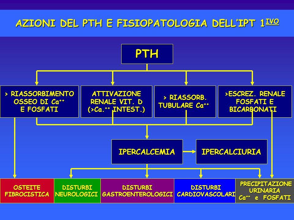 AZIONI DEL PTH E FISIOPATOLOGIA DELLIPT 1 IVO ATTIVAZIONE RENALE VIT. D (>Ca. ++ INTEST.) > RIASSORB. TUBULARE Ca ++ >ESCREZ. RENALE FOSFATI E BICARBO