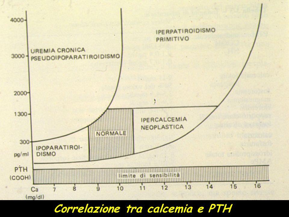 IPERPARATIROIDISMO PRIMITIVO Diagnostica di laboratorio SANGUE Ipercalcemia Ipofosforemia > PTH > Fosfatasi Alcaline > Osteocalcina URINE Ipercalciuria Iperfosfaturia > Idrossiprolina > AMP-ciclico