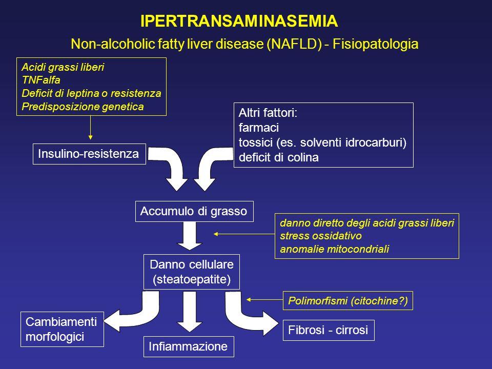 IPERTRANSAMINASEMIA Non-alcoholic fatty liver disease (NAFLD) - Fisiopatologia Acidi grassi liberi TNFalfa Deficit di leptina o resistenza Predisposiz