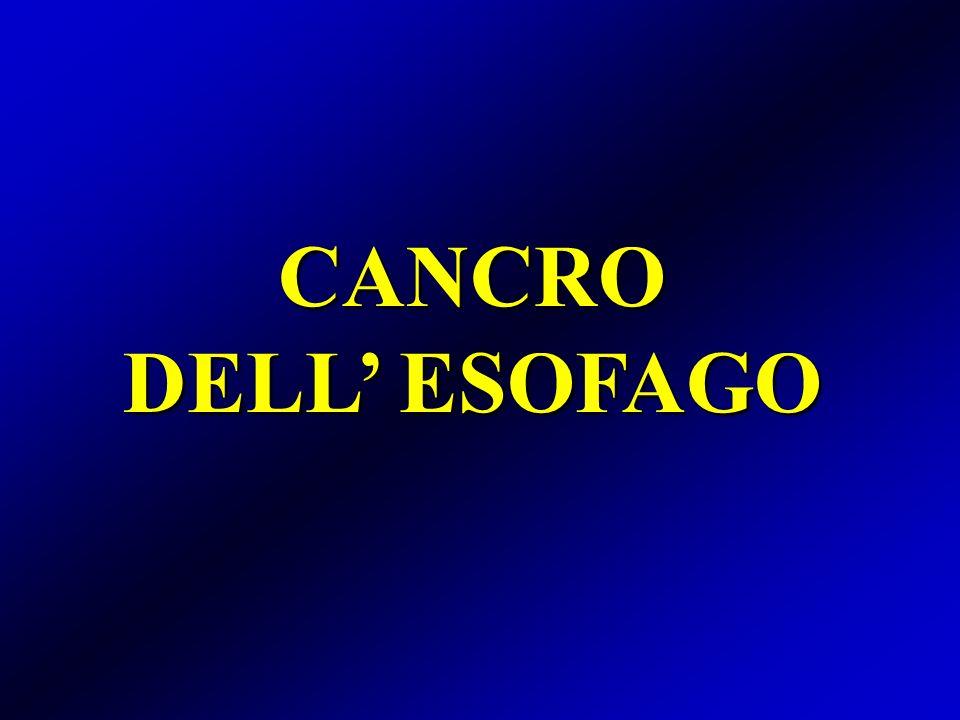 Cancro dellesofago Test di autovalutazione Cosa si intende per esofago di Barrett.