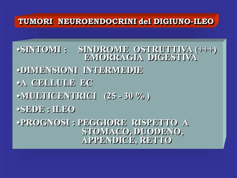 TUMORI NEUROENDOCRINI del DIGIUNO-ILEO SINTOMI : SINDROME OSTRUTTIVA (+++) EMORRAGIA DIGESTIVA DIMENSIONI INTERMEDIE A CELLULE EC MULTICENTRICI (25 -