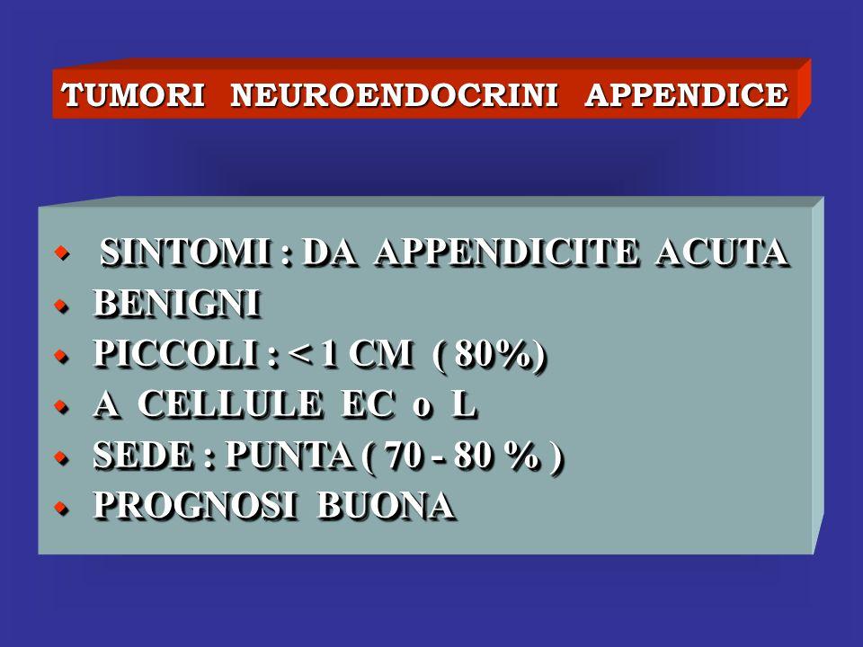 TUMORI NEUROENDOCRINI APPENDICE SINTOMI : DA APPENDICITE ACUTA BENIGNI BENIGNI PICCOLI : < 1 CM ( 80%) PICCOLI : < 1 CM ( 80%) A CELLULE EC o L A CELL
