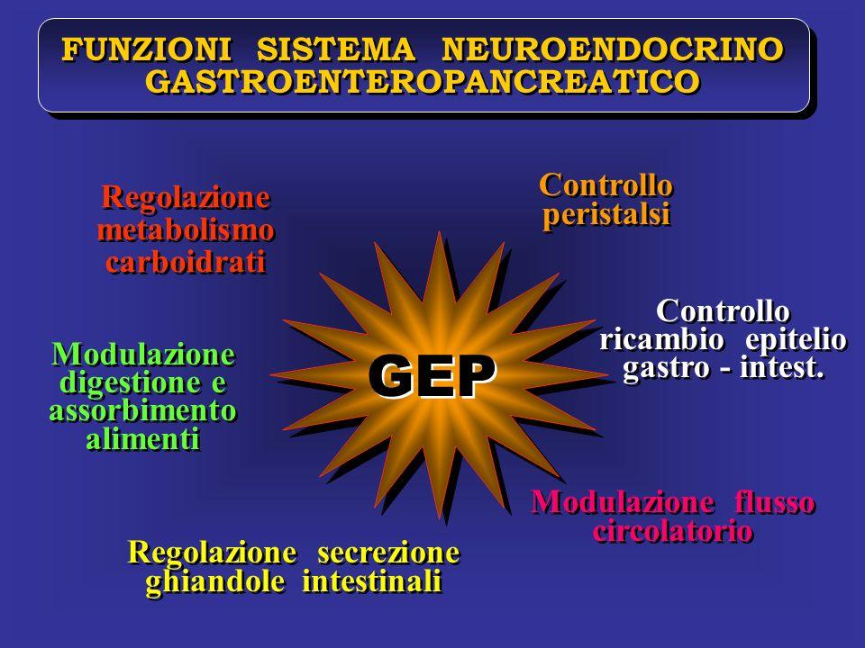 FUNZIONI SISTEMA NEUROENDOCRINO GASTROENTEROPANCREATICO FUNZIONI SISTEMA NEUROENDOCRINO GASTROENTEROPANCREATICO Regolazione metabolismo carboidrati Re