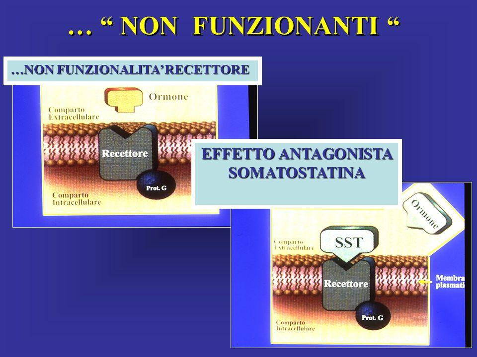 … NON FUNZIONANTI …NON FUNZIONALITA RECETTORE EFFETTO ANTAGONISTA SOMATOSTATINA